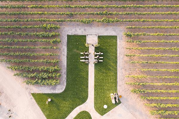 The-Vineyard-Lawn